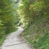 D-0573-weg-matschatsch-steinegger-eppan.jpg