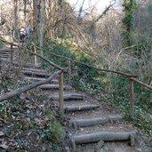 D-4355-fruehlingstal-maerzenbecher-wanderweg-stufen.jpg