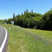 D-7723-fahrrad-mendelpass-strasse.jpg