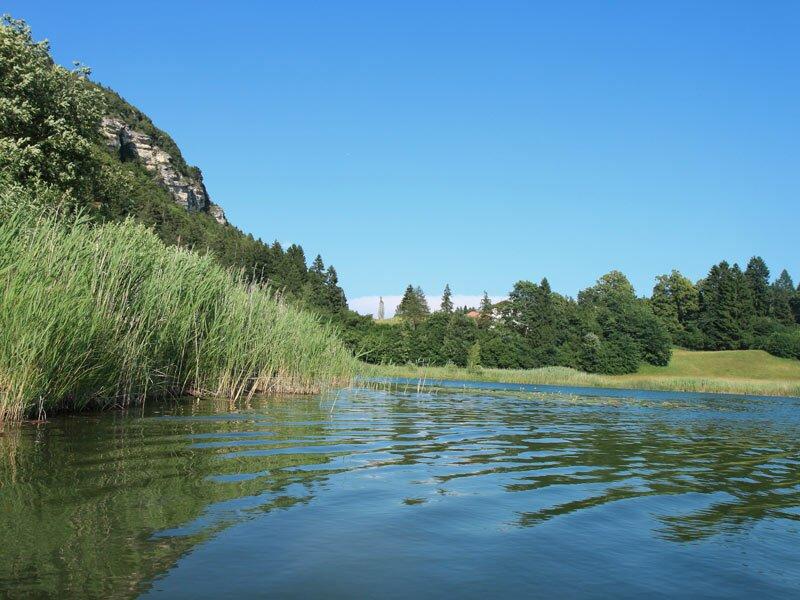 Fennberger See bei Margrei Badesee und Biotop bei Margreid im