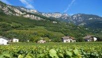 Radtour Weinroute Süd